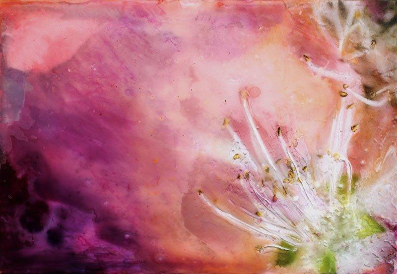 mertel-beate-pink